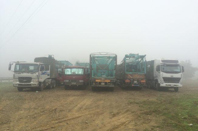 Vận chuyển cẩu bánh xích 250 tấn Lào – Việt Nam – Lào